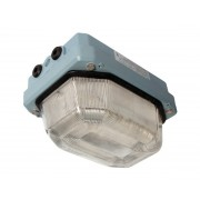 Ex lighting fitting LED