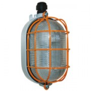 Ex bulkhead lamp (oval)